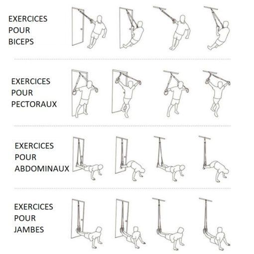 trx exercices